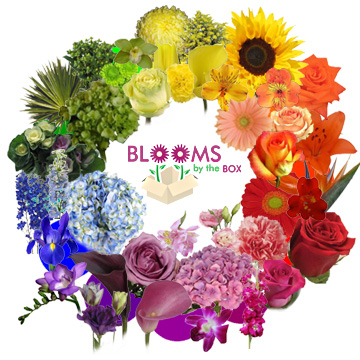 Blooms By The Box