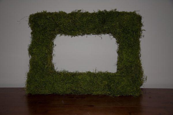diy moss frames