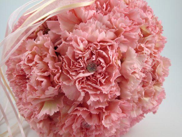 Carnation pomanders