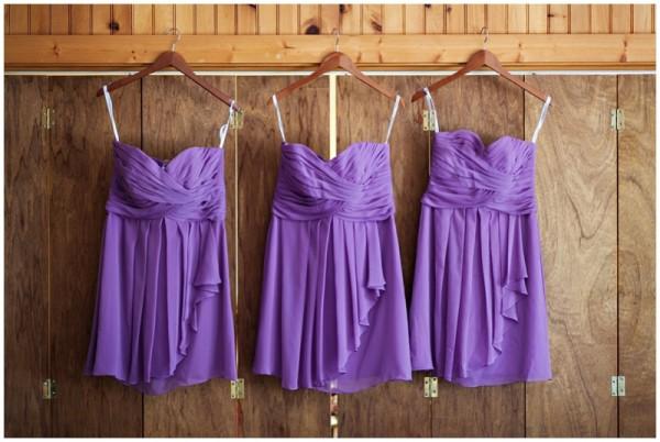 Purple Park Wedding_0003