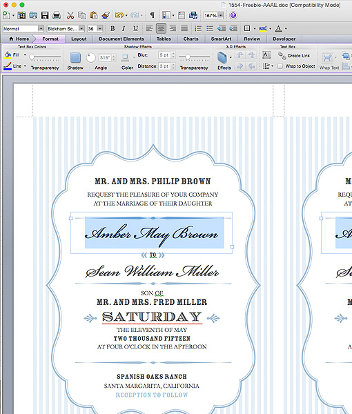 Budget-Savvy-Bride-Collection-Amber-Edit-Template