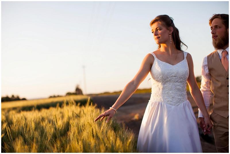 wedding wheat field photos
