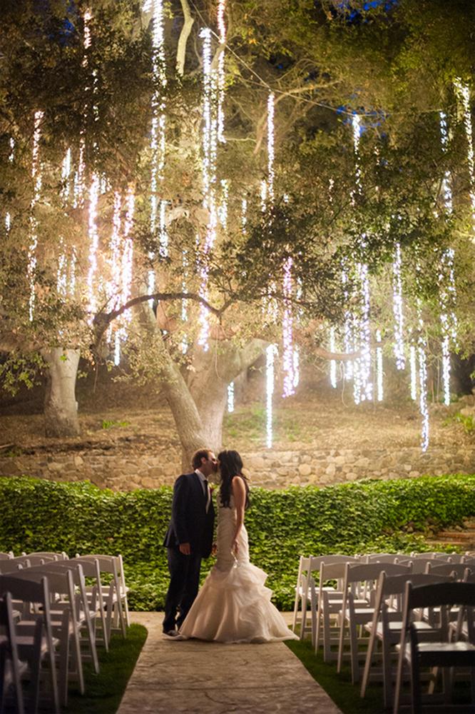 tree with lights!