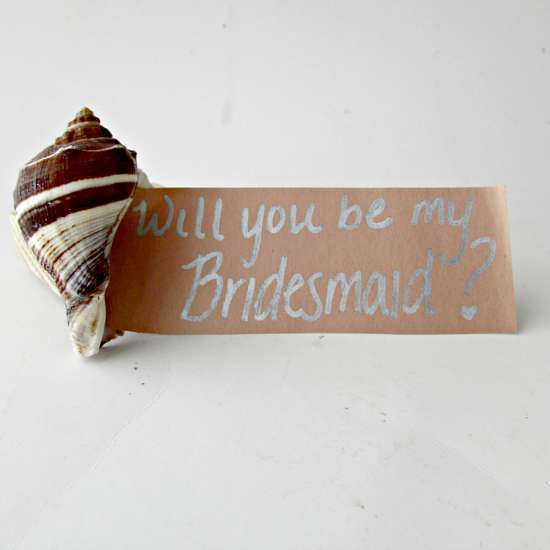 Beachy Bridesmaids Proposal Project
