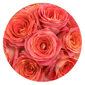 fifty flowers - where to buy bulk flowers for weddings