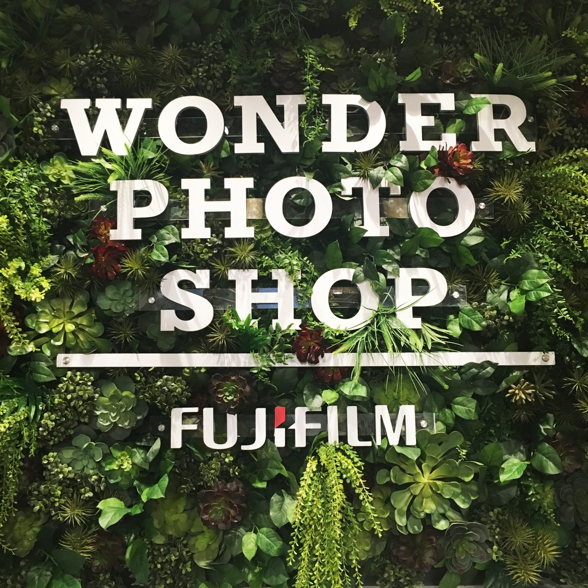 fujifilm wonder photo shop nyc