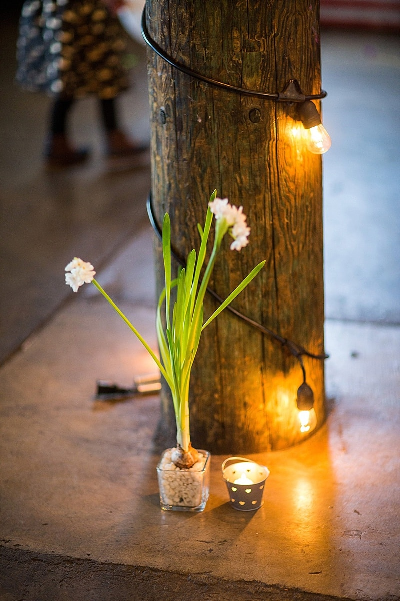 forced bulb wedding decor