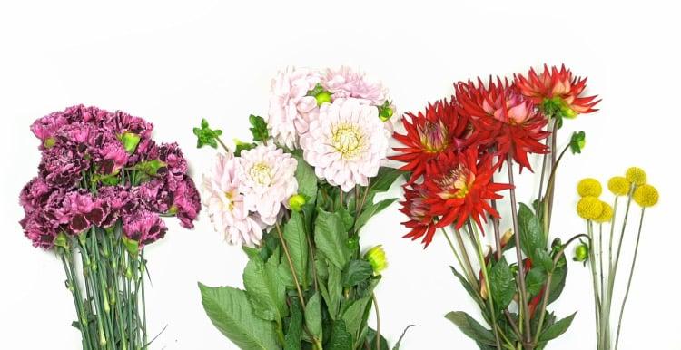 DIY Flower Chandelier - Flowers