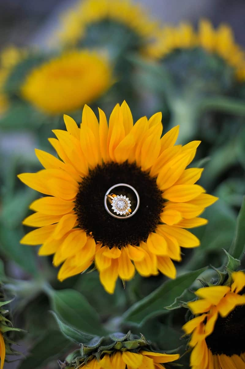sunflower wedding ring