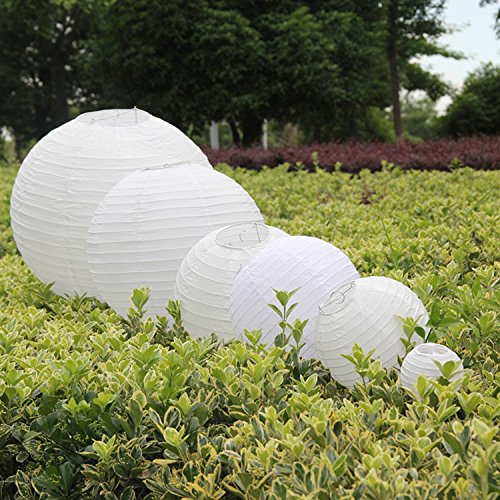 amazon wedding decor - paper lanterns