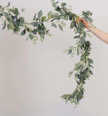 Spiral Seeded Eucalyptus Garland
