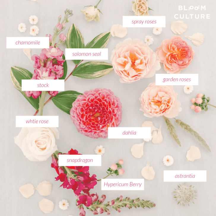 Flower Types - Flower Recipe - DIY Wedding Flowers from Bloom Culture Flowers