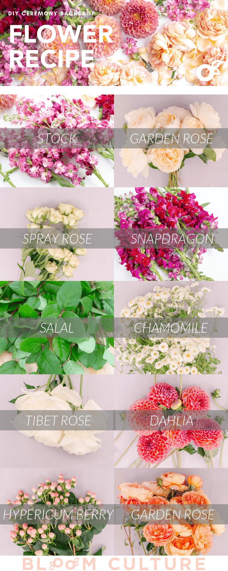 Bloom Culture DIY Flower Backdrop - Flower Recipe