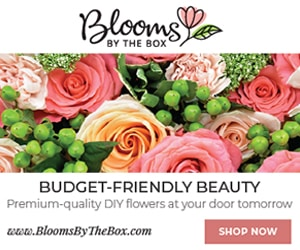 blooms by the box - bulk wedding flowers