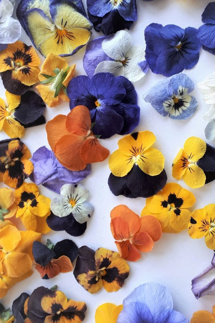 YossiFlowers on Etsy - Dried Edible Flowers for Your Wedding Cake