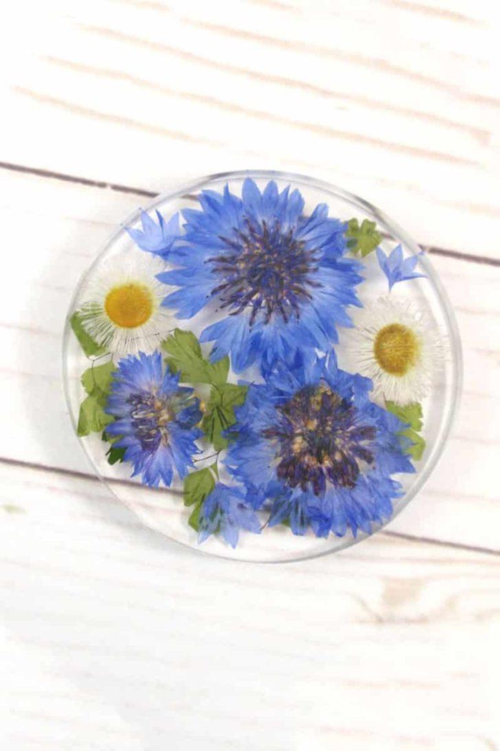 SmilewithFlower on Etsy - Pressed Flower Coasters