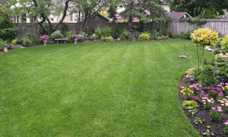 backyard wedding at home