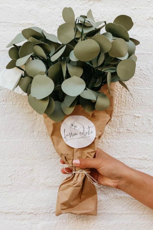 Paper Silver Dollar Eucalyptus By FarrenCeleste
