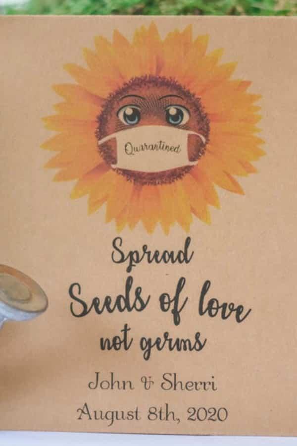 Sunflower Seeds Of Love Favor