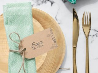 dtocs palm leaf plates