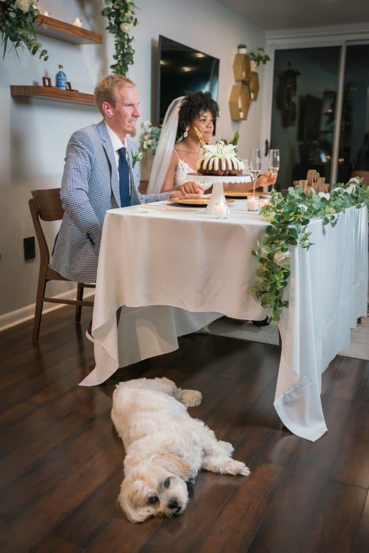 bride and groom - zoom wedding