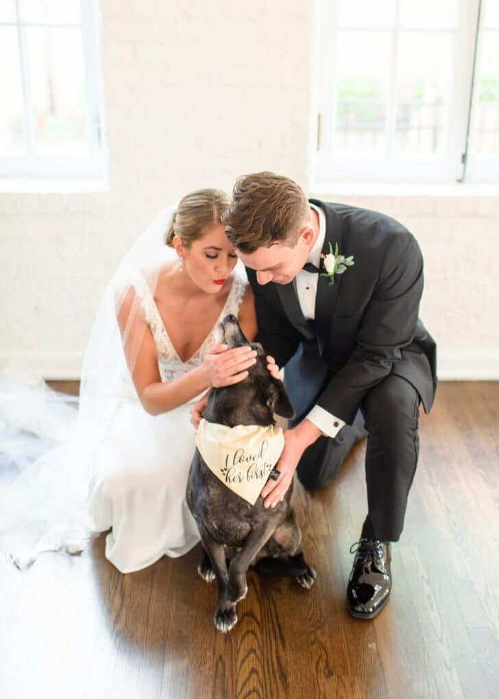 dogs at weddings - bride and groom - best dog - dog of honor